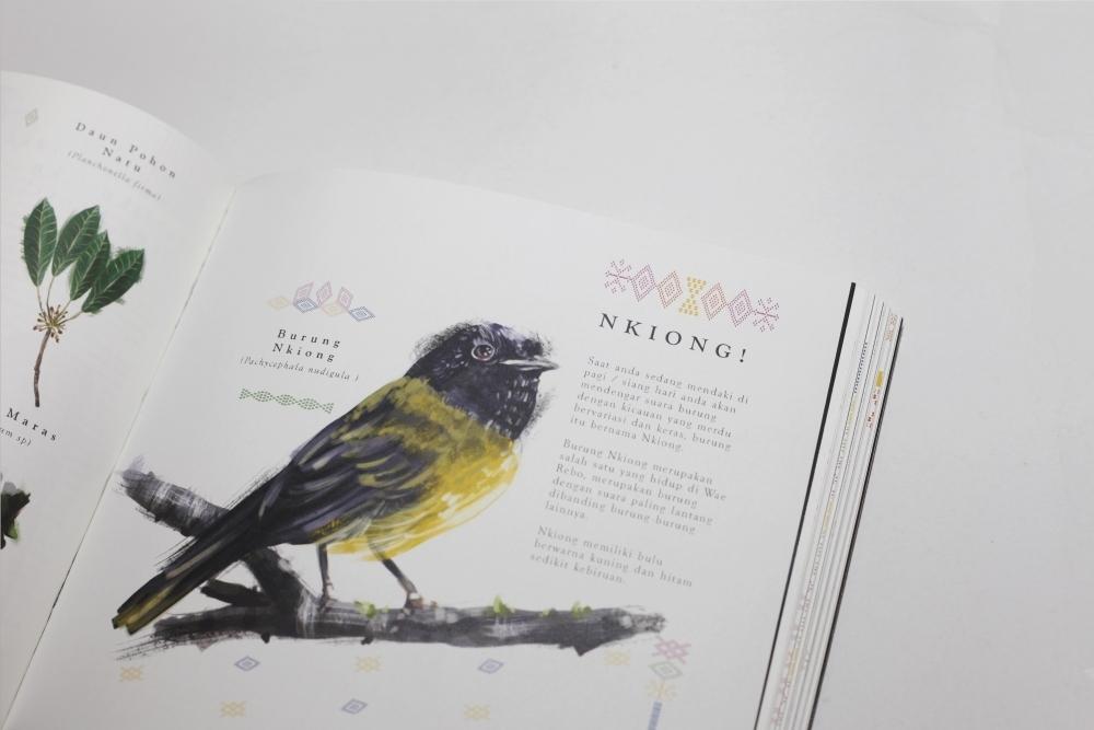 Wae Rebo Kampung Diatas Awan by Hans Christian Japutra (hanscj),desain editorial,ilustrasi,infografis,melukis,desain percetakan